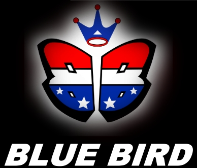 Blue Bird Servo